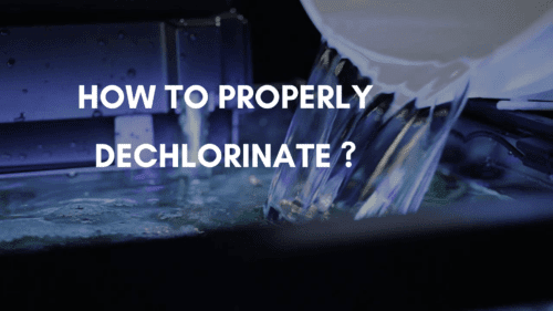 How Long Does Water Take to Dechlorinate _