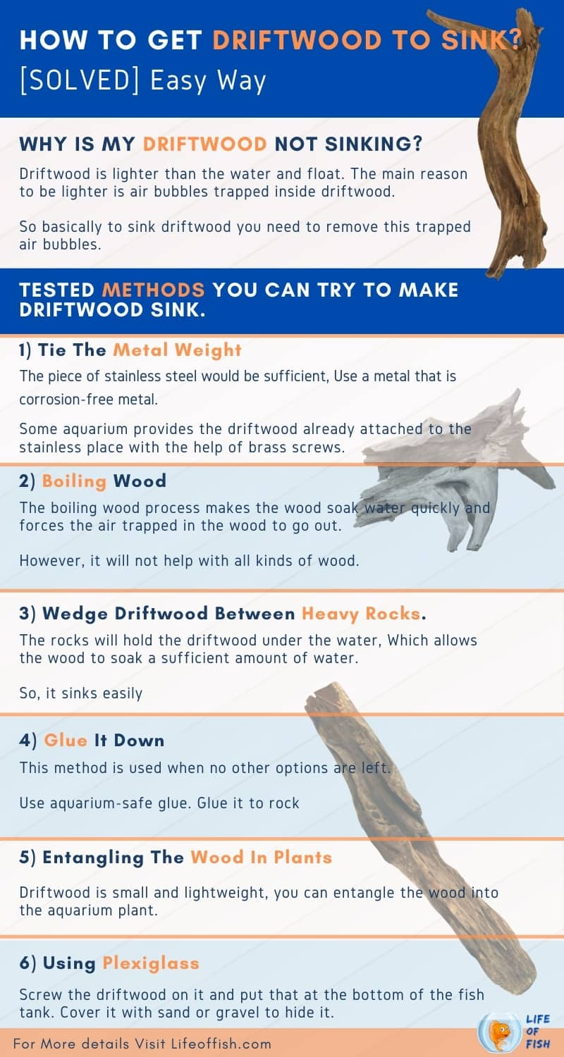 How To Get Driftwood To Sink infographic